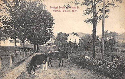 - Typical Scene on Main Street Summitville, New York, Postcard