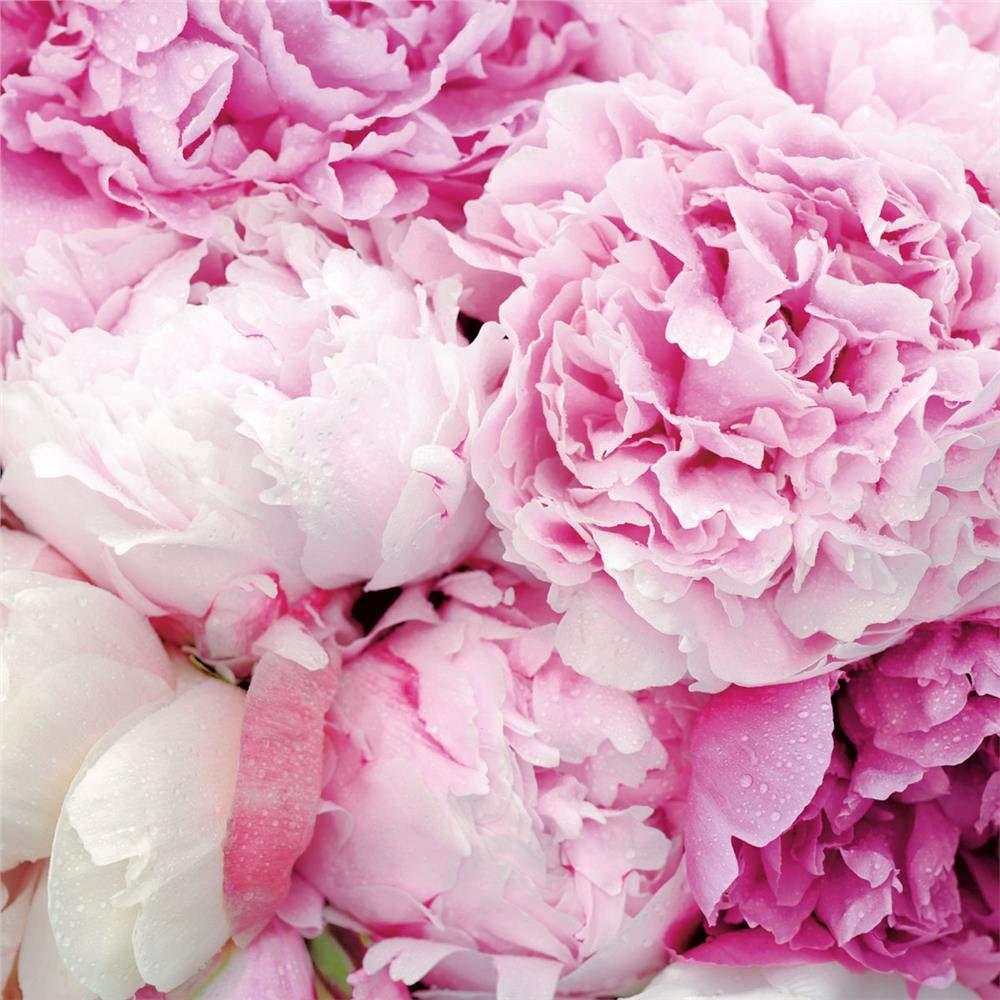 33 x 33 20 pezzi 3 strati Tovaglioli di carta monouso Bellezza Rosa
