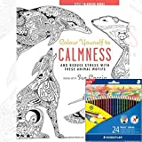 Colour Yourself to Calmness Anti-Stress Adult Colouring Book With Colouring Pencil