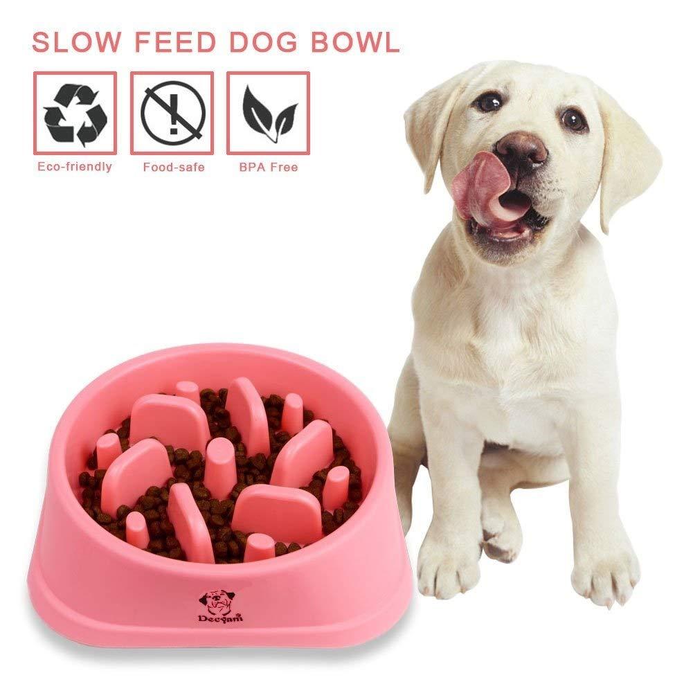 Antideslizante Alimentacion Plato alimentador Tazon Comedero para Mascotas Bebedero Cuenco Bol Recipiente /… Blue 1 Decyam Comedero Perro Gato
