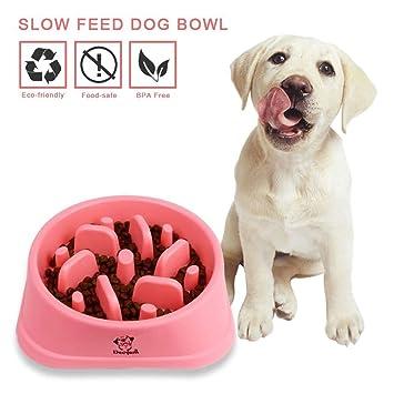 Decyam Comedero Perro Gato, Antideslizante Alimentacion Plato alimentador Tazon Comedero para Mascotas Bebedero Cuenco Bol Recipiente .