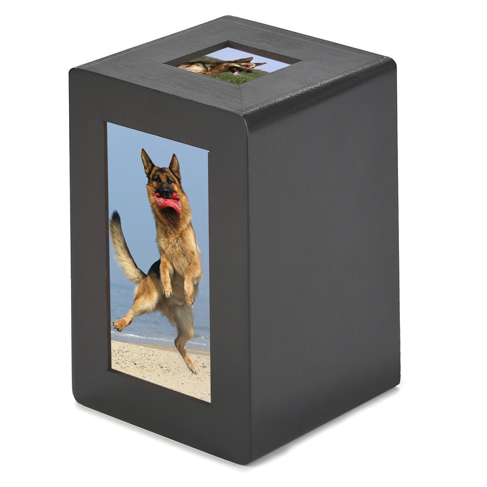 Pidsen Pet Cremation Urn Wooden Memorial Urn Photo Box for Cat Dog (M, Brownish Red)
