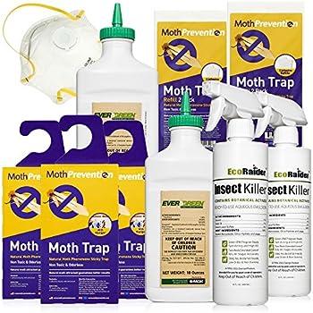 Amazon Com 4 Allure Moth Traps 6 Diamond Shaped Pantry