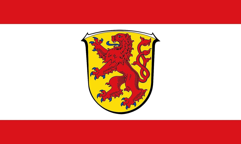 magFlags Bandera Large Reinheim Odenwald   City of Reinheim, Hesse, Germany   Stadt Reinheim, Hessen, Deutschland   Bandera Paisaje   1.35m²   90x150cm: Amazon.es: Jardín