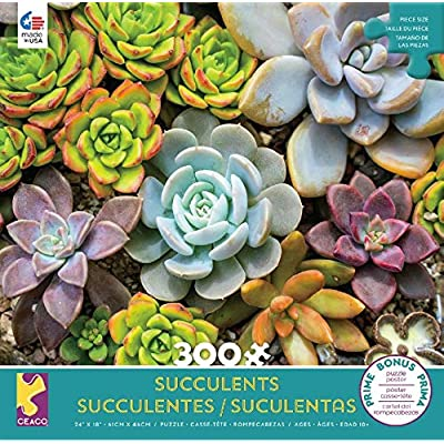 Succulents - Rosette Puzzle - 300 Pieces: Toys & Games