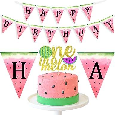Watermelon Happy Birthday Party Banner Sign Pink Green Silver Tutti Frutti