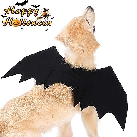 Halloween Murciélago Alas Ropa Perro Gato Invierno Calentar ...