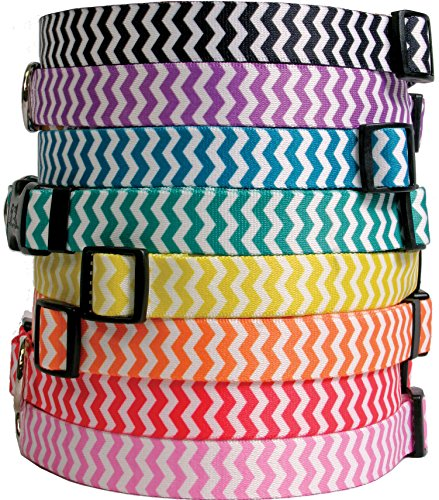 Straw Dog Bedding (Chevron Stripes Dog Collar - Licorice - Large 18 to 28 inch length x 1 inch wide - with Tag-A-Long ID Tag System)