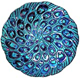Continental Art CAC2606681 18'' Hand Painted Peacock Feather Glass Bowl Bird Bath/Feeder, Fountain, Decorative Plate