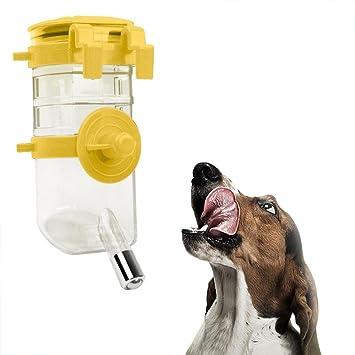Leegoal Dispensador de Agua para Mascotas, Botella de Agua para Perro con alimentador automático de
