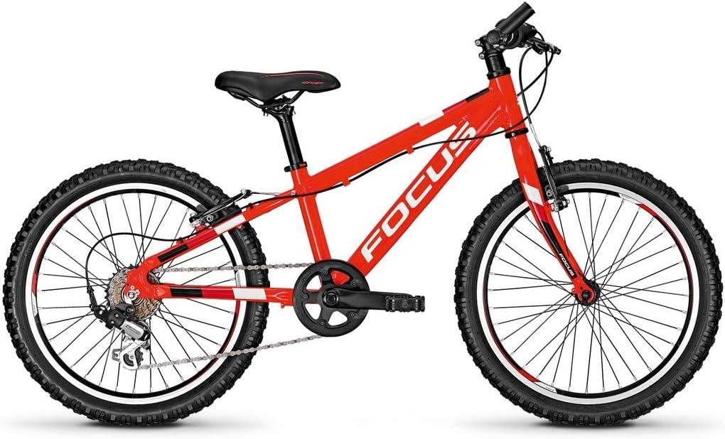 Focus Raven Rookie 20R Bicicleta Infantil 2018, Color Rojo, tamaño ...