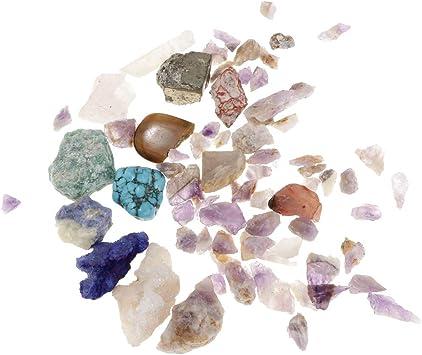 D DOLITY Caja de Colección de Minerales y Rocas Cristales Naturales Juguete Educativo de Ciencia de Geología: Amazon.es: Juguetes y juegos