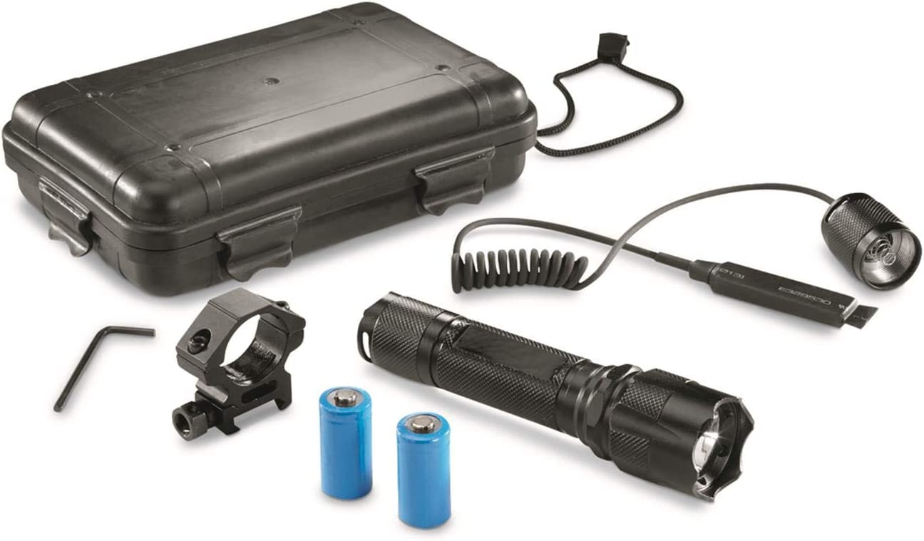 Amazon Com Hq Issue 500 Lumen Tactical Light Sports Outdoors