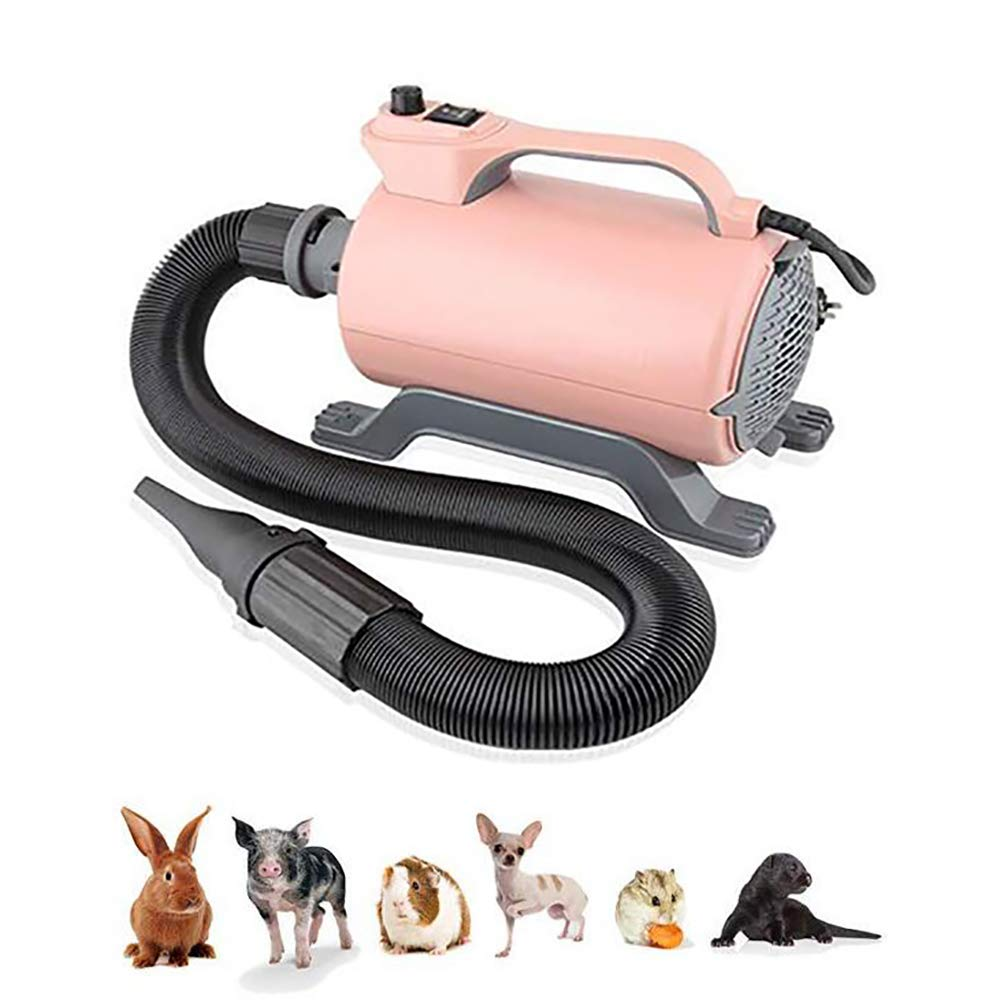 FXQIN Variable Speed Dog Cat Hair Dryer, 2200 w Strong Power Motor & Low Noise & 3 Different Nozzles, Professional Pet Grooming Blower