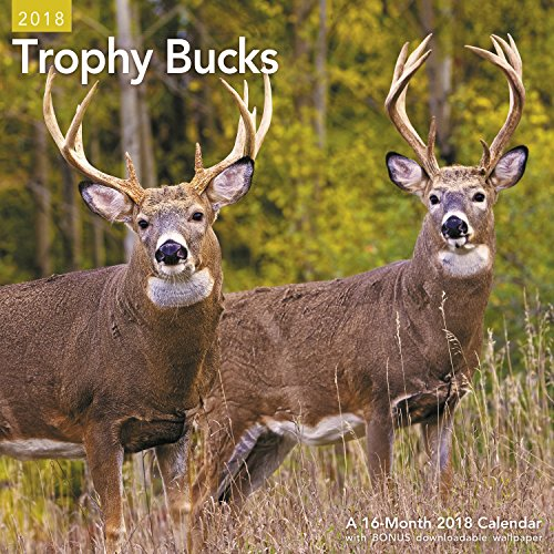 2018 Trophy Bucks Wall Calendar (Mead)