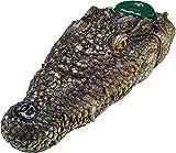 PoolPodz Alligator Head Float & Temperature