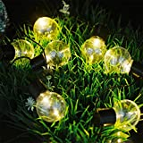 Solar Globe String Lights,MIYA LTD 10LED Fairy String Lights Bubble Crystal Ball Light Garland Lamp Decorative Lighting for Garden,Yard,Porch,Home,Christmas Tree Decorations - 10 LED Warm White Light
