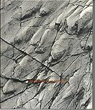 Stratigraphy and Life History, Marshall Kay, Edwin H. Colbert, 0471461059