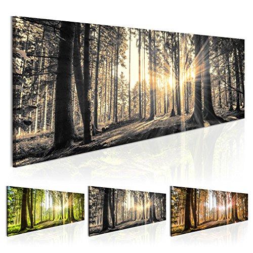 Bilder 135x45cm ! Echtes XXL Panoramabild - Fertig Aufgespannt - TOP - Vlies Leinwand - 1 Teilig - Wand Bild - Kunstdruck - Wandbild - Natur Wald Landschaft c-B-0077-b-c 135x45 cm B&D XXL