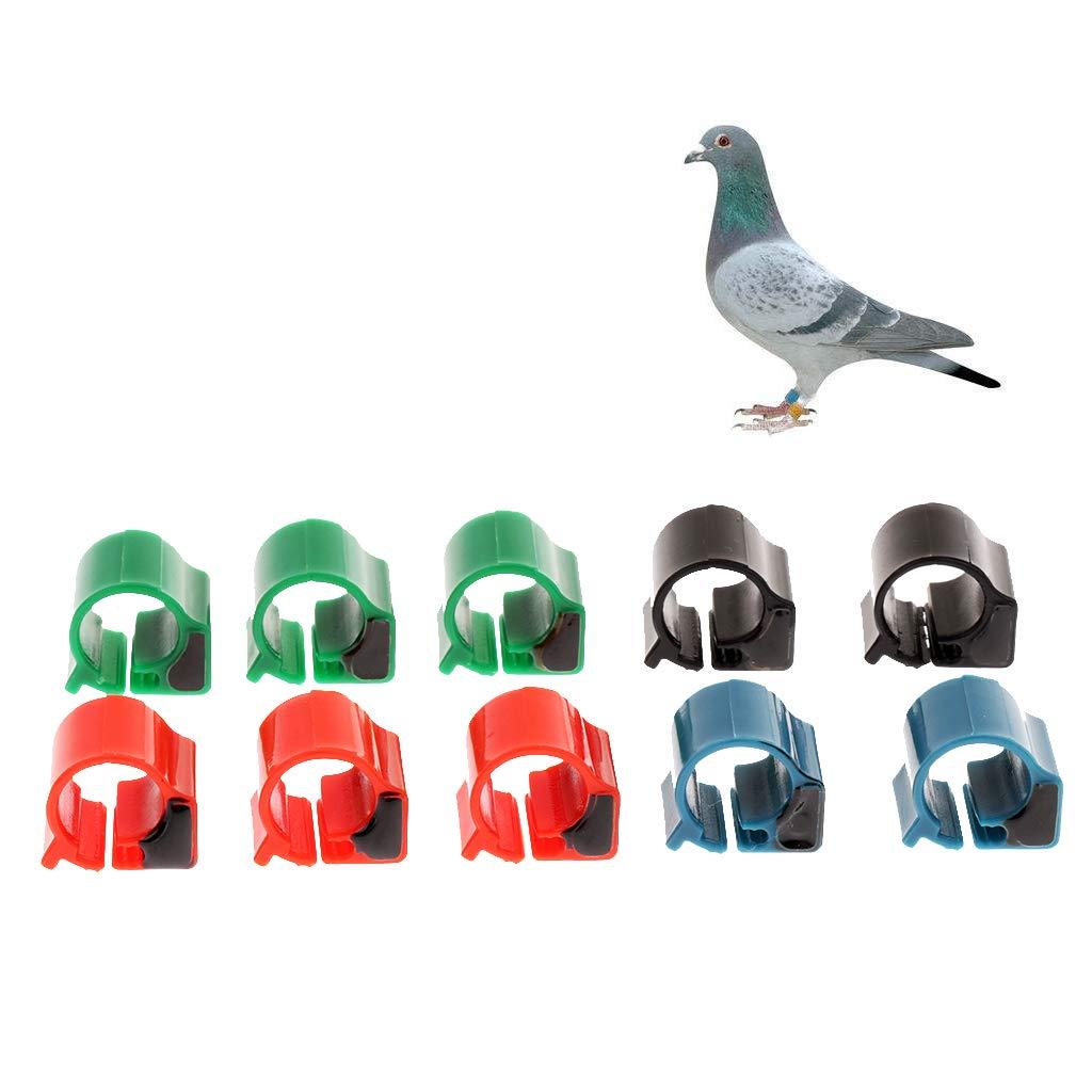 B Blesiya 10 Piezas Anillo Pie de RFID P/ájaro Accesorios de Animales Peque/ños F/ácil de Usar Elegante