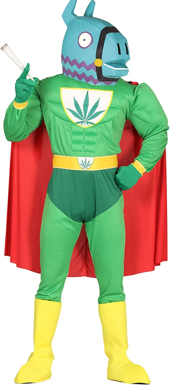 Disfraces de Videojuegos Disfraz de MariLlama Man: Amazon.es: Ropa ...
