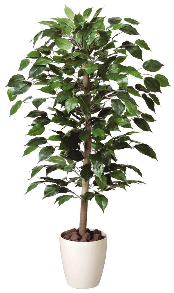 GREEN-m/光触媒 鉢植え インテリアグリーン 造花 ベンジャミン100cm 200A15032 B00LKE3JJ4