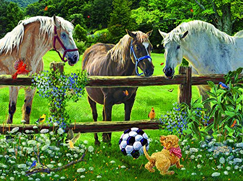 Wanna Play - A 1000 Piece Jigsaw Puzzle by SunsOut (Soccer Flower)