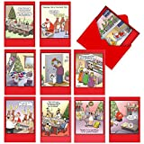 A1250 TIM WHYATT'S TRACES OF NUTS: Assorted Box Of 10 Hilarious Christmas Cards, W/12 Envelopes (10 Designs, 1 Card Per Design)