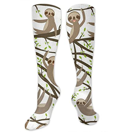 f63d5a27375 Image Unavailable. Image not available for. Color  Malsjk8 Funny Kawai  Sloth Set On A Branch Casual Unisex Sock Knee Long High Socks Sport