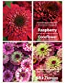 Raspberry Double Scoop Coneflower Seeds (Echinacea) 50 Seeds Upc 600188190304 & Free Pack Purple Lime Zinnias