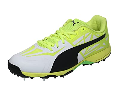 07008025be7 Puma Men's Evospeed 1.5 Spike Cricket Shoes
