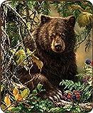 Regal Comfort Black Bear Woods Faux Fur Blanket 79'' x 96'' Queen/Full Size