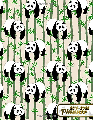 2019-2020 Planners: Pretty Vintage Panda Bamboo Bears Daily ...