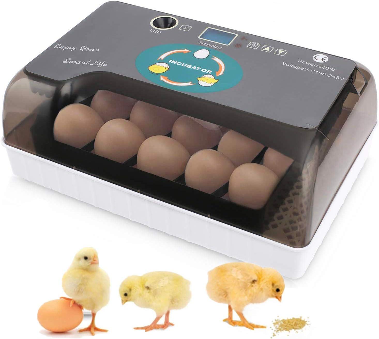 Incubadora Automática de Huevos 4-35 Huevos con Pantalla Digital con iluminación LED y Control Eficiente e Inteligente de Temperatura