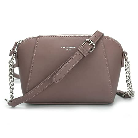 e8d016b716 David Jones - Women s Small Zipper Crossbody Purse - Silver Chain Shoulder  Strap Bag - Rigid Faux Leather Lady Saddle Bag - Trapeze Messenger ...