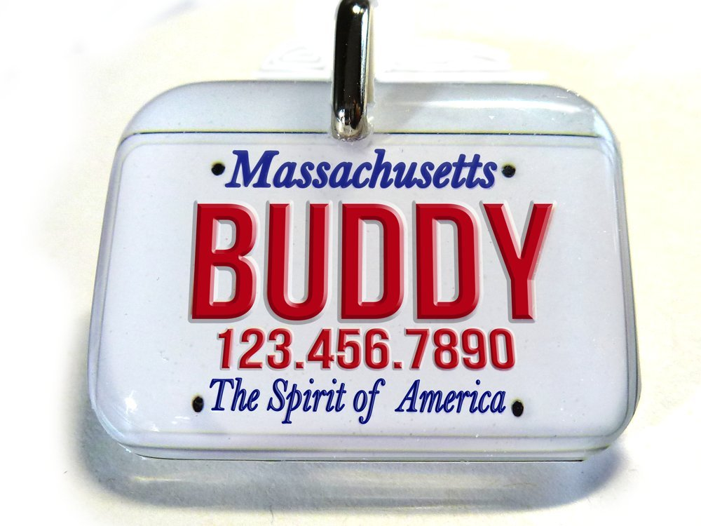 Massachusetts Car License Plate pet tag Dog ID cat pet Tags Personalized with Your pet info 3 Different by ID4Pet