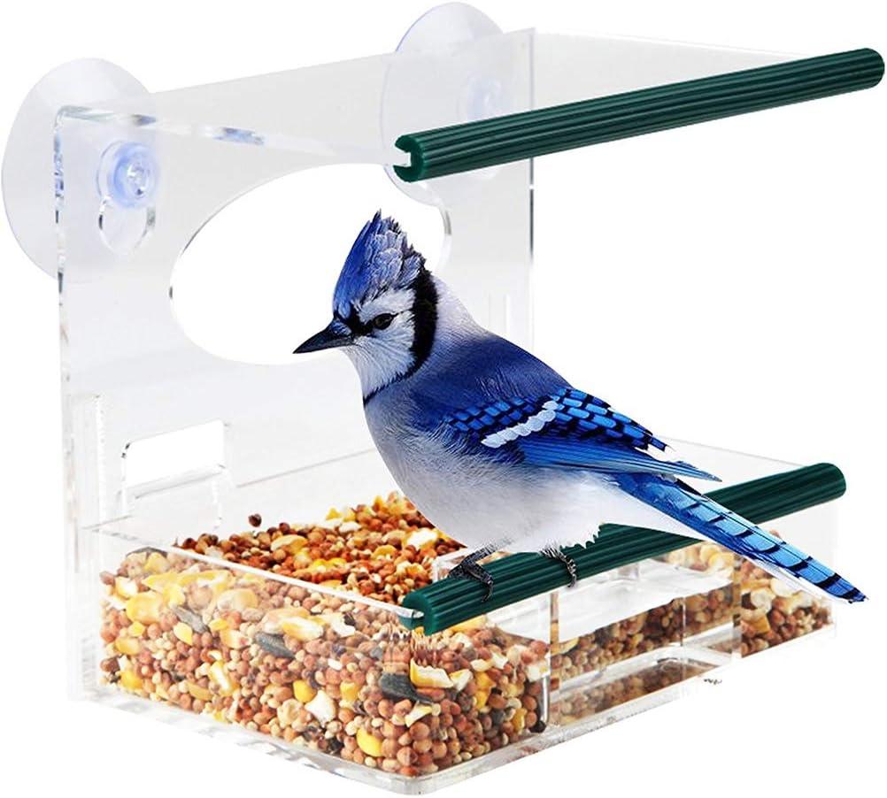 Leikance - Comedero para pájaros con ventosas (16 x 12 x 15 cm), Transparente