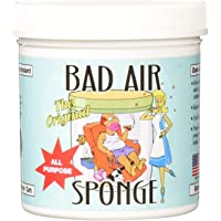 BAD AIR SPONGE中和吸收异味空气净化剂14盎司(414毫升)(4支14盎司装)