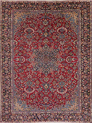 (9X12 Vintage Floral Najafabad Area Rug Red Oriental Hand-Knotted Wool Carpet )