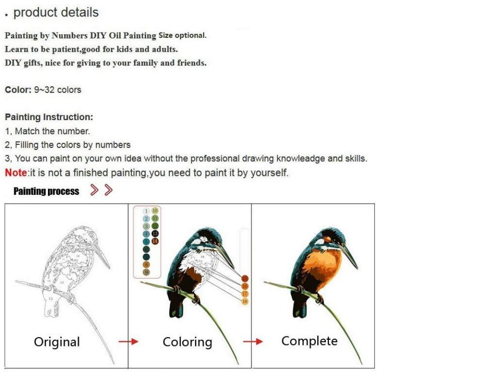 16 x 20 Pulgadas sin Marco Pintura al /óleo Pintura de Bricolaje por Kit Digital Regata Dibujo en Lienzo con Pinceles Regalos de decoraci/ón