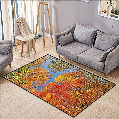 """Price comparison product image Rectangular Rug, Leaves Decor, Falls Colors in National Country Park Nature Observation Base Perspective Photo, Anti-Static,  Water-Repellent Rugs, 4'11""""x6'10"""", Orange Blue Green"""