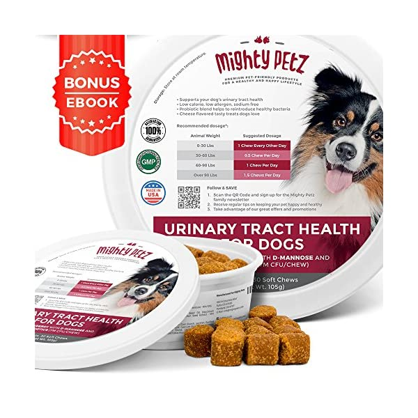MAX Cranberry for Dogs - Cures & Prevents Painful UTI Urinary Tract Infections. Bladder Support Pills & Kidney Health. No More Antibiotics & Incontinence! D-Mannose & Probiotics Chews, Save on Vet 1