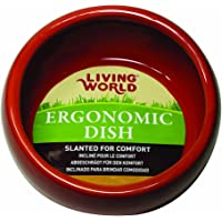 Living World Ceramic Ergonomic Pet Dish 120 ml Capacity, Terracotta Small