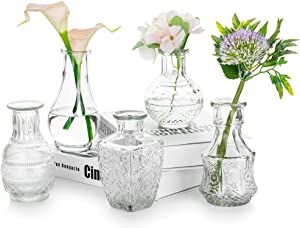 Glass Single Bud Vase Set of 5 Decorative Rustic Flower Vases Small Mini Table Floral Vase Barcelona Style for Home Decor Centerpieces, Events, Vintage Look