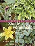 img - for An Encyclopedia of Shade Perennials book / textbook / text book
