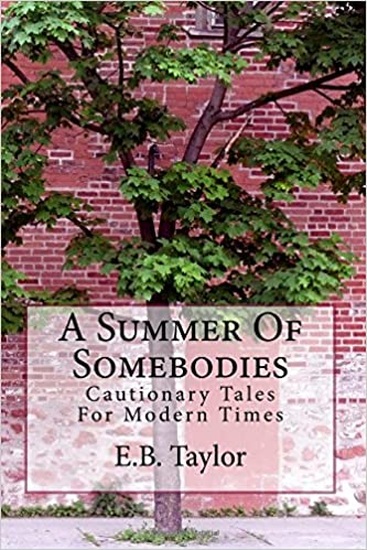 Book A Summer Of Somebodies: Volume 1 (Cautionary Tales For Modern Times)