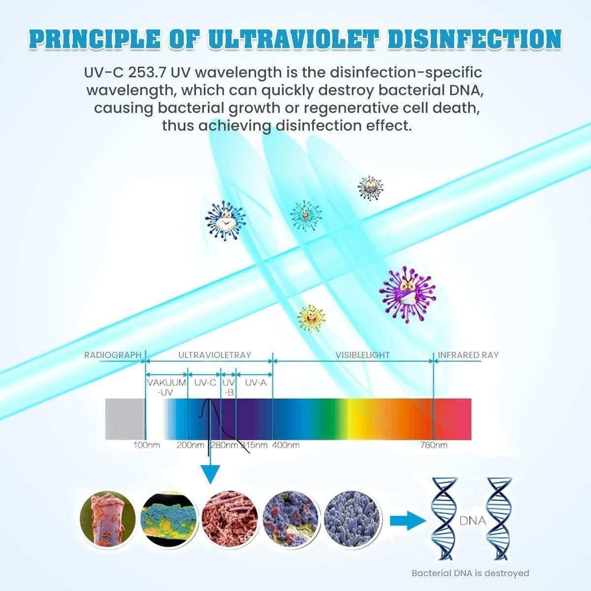 Relojes UVA Caja Desinfectante Port/átil Purificador de Aire Limpiadora Mata Bacterias para Mascarillas MECO Esterilizador UV de Tel/éfono M/óvil con 3 Luces Ultravioletas Desinfecci/ón UVC Llaves