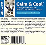 (2 Pack) OralX Calm and Cool Paste Horse Calming Supplements