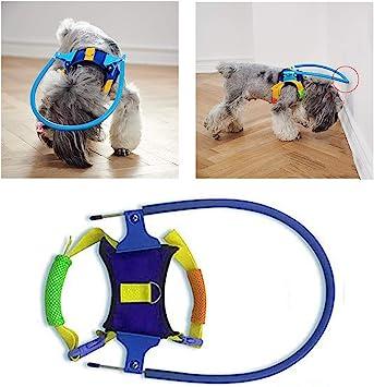 Haolv Ciego para Mascotas Anti-colisión Anillo para Caminar con ...