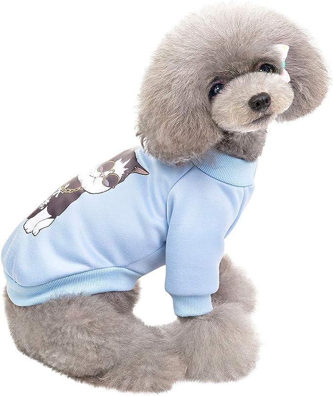 Lookhy Abrigo de Punto clásico para Perro, cálido, para Invierno ...